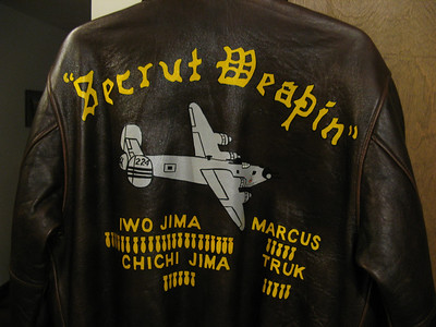 This the back of the repro jacket, the artist did a nice job.