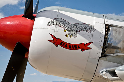 "Nose Art - Hawker Sea Fury - ""Sea Hawk"""