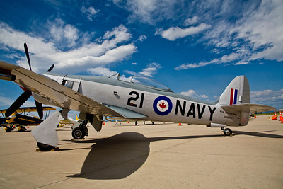 "Hawker Sea Fury - ""Sea Hawk"""