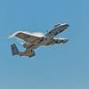 """""""Warthog"""" A-10 Thunderbolt"""