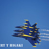 The Navy Blue Angels :
