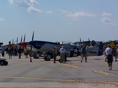 Gathering of Mustangs and Legends
