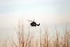 Helicopter zoekt drenkeling in de Schelde