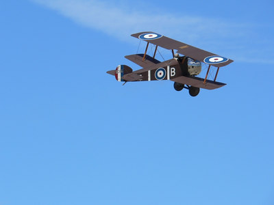 Alf Williams Sopwith Camel. Should be in a glass display case.