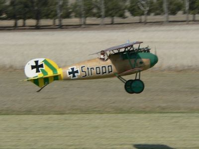 Dean Erby's 1/4 scale Albatross D.VA from a Proctor kit. Very neatly done model.