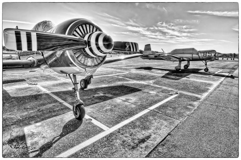 ~Spinning:  black, white, black, white~<br /> <br /> Yaks on the flight line<br /> <br /> Wings Over Flagler Airshow 2011