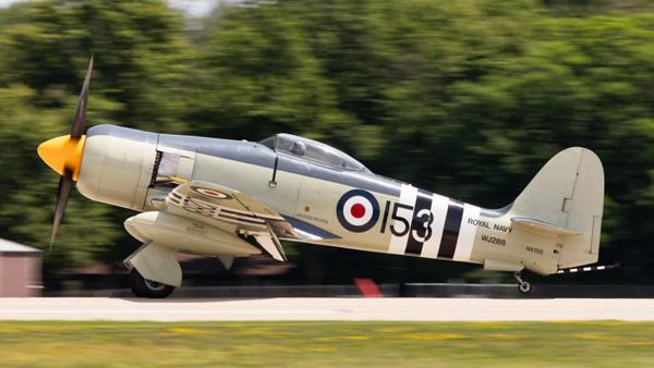 WJ288. Hawker Sea Fury FB.11. Royal Navy. Oshkosh. 210719.