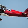 Red biwing