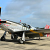 P-51 Mustang Trainer