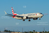 American 737 Max 8