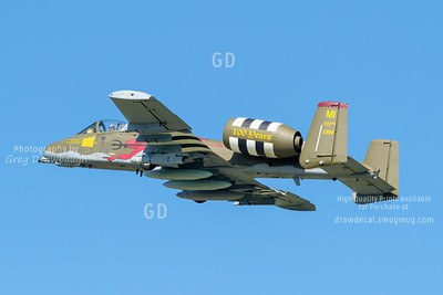 Michigan Air National Guard A-10C