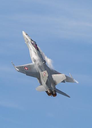 Boeing, F/A-18, F/A-18C, Hornet, J-5007, RIAT 2007, Swiss Air Force