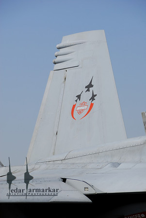 """40th Anniversary markings on the inside tail of the CAF Bird from VFA-147 """"Argonauts"""""""