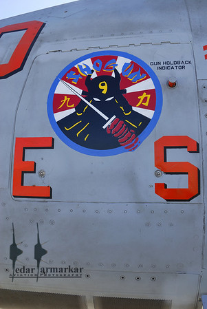 Markings from the recent deployment to Japan, in CVW-9 (Carrier Air Wing-9)