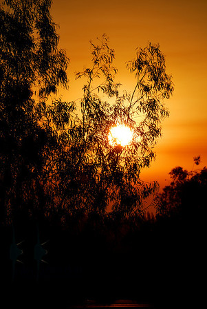 Sunrise along Highway 5 South - enroute to NAS Lemoore