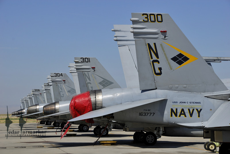 """Tailcodes of F/A-18E Rhinos from VFA-146 """"Blue Diamonds"""" with the CAG Bird in the foreground"""