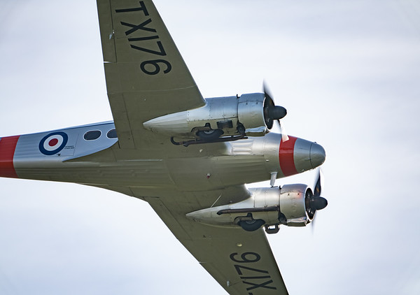 Shuttleworth, Old Warden-> Practice display, Old Warden-> Race Day 2018, Aircraft-> Avro-> Anson C.19-> TX176 - 07/10/2018@09:34