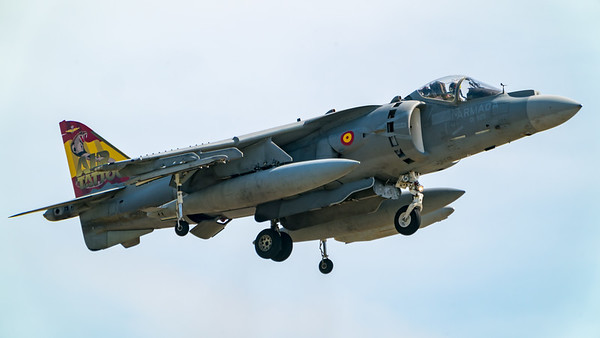 Arrivals Day, Yeovilton Air Day 2-`9 - 12/07/2019@15:21