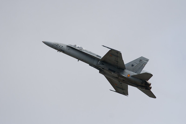 McDonnell Douglas F/A-18F Super Hornet (Spanish Air Force)