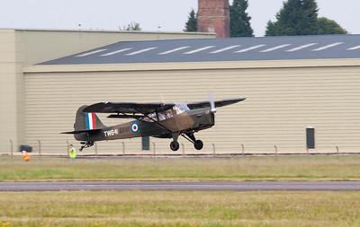 Beagle A.61 Terrier 2