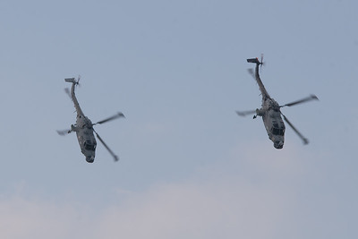 """The Black Cats Helicopter Display Team """"Agusta-Westland Lynx Mk8"""" (Royal Navy)"""