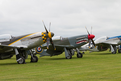 North American P-51D Mustangs