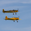 1946 - de Havilland DHC.1 Chipmunk and 1937 - Miles Magister