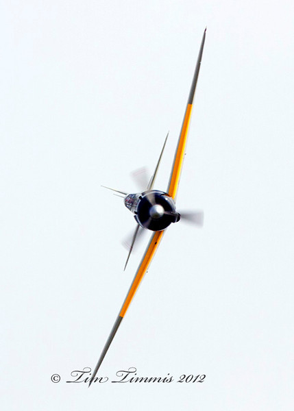 Wings Over Houston_21010262012-2