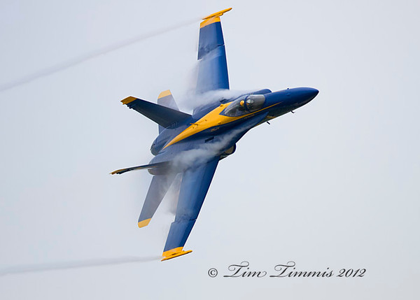 Wings Over Houston_54010262012-2