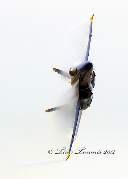 Wings Over Houston_55910262012-2