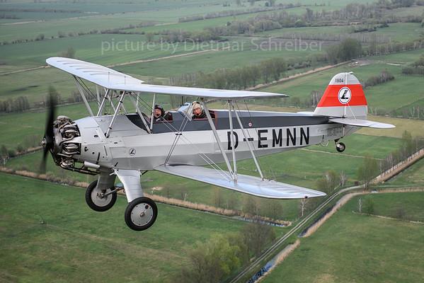 2019-04-26 D-EMNN FW44 Stieglitz