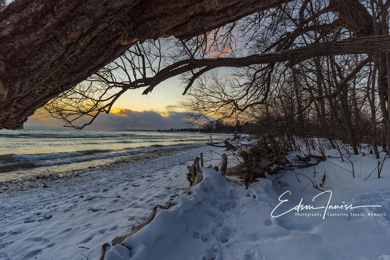 A Winter Walk 2