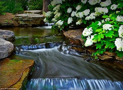 gentle stream at Aldridge Gardens in Hoover, AL