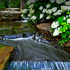 gentle stream at Aldridge Gardens in Hoover, AL