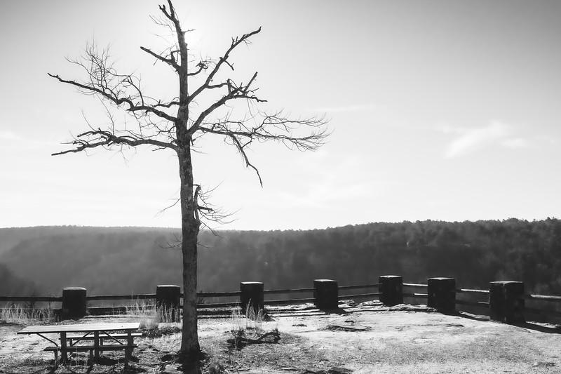 Little River Canyon National Preserve near Fort Payne Alabama