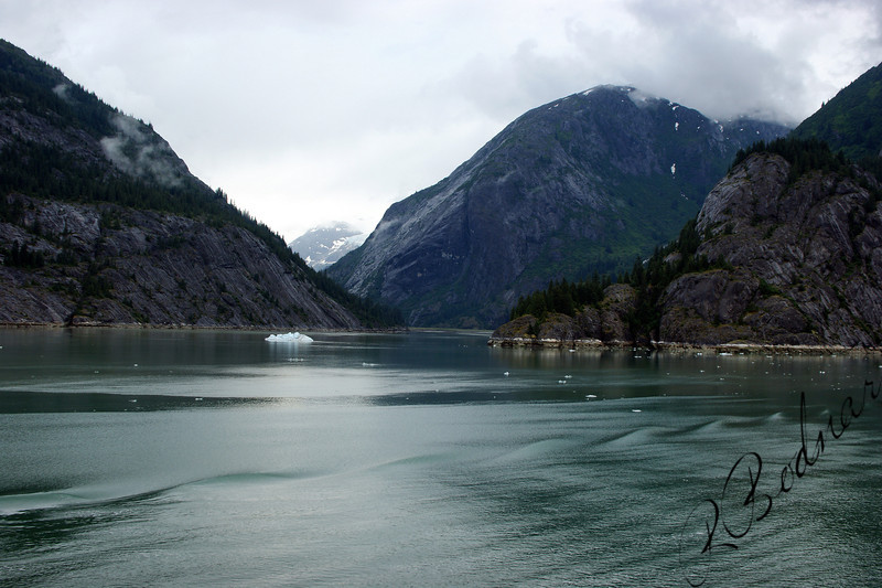Photo By Robert Bodnar..............Endicott Arm FJord, on way to Dawes Glacier