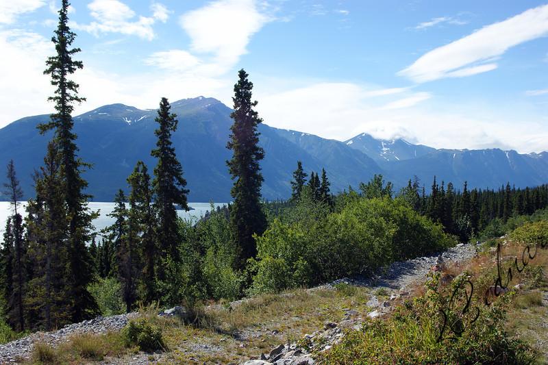 Photo By Robert Bodnar...... Yukon Landscape