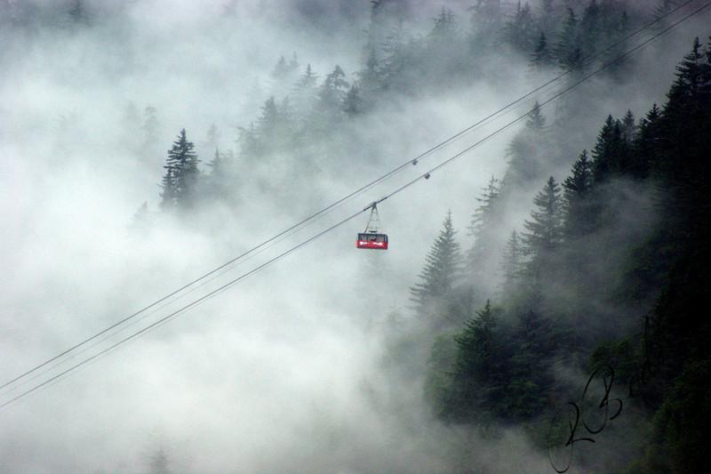 Photo By Robert Bodnar......Mt Roberts Tram, Juneau Alaska