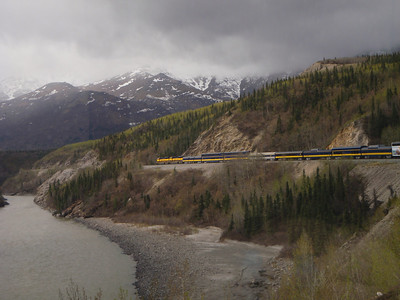 Train to Denali: train winding around the bend