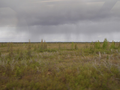 Train to Denali: thunderstorm in distance