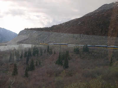 Train to Denali scenic view in the rain