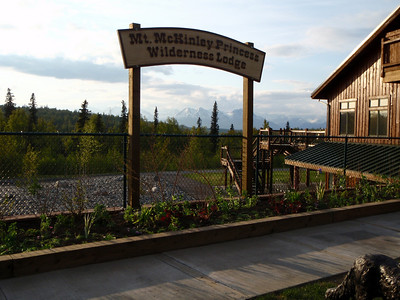 Accommodations: Mt. McKinley Princess Wilderness Lodge