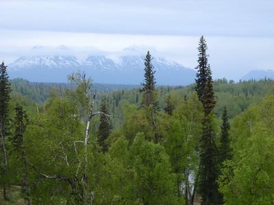 Mt. McKinley scenic view