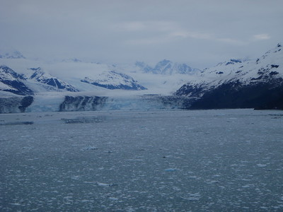 College Fjord scenic view: more glaciers