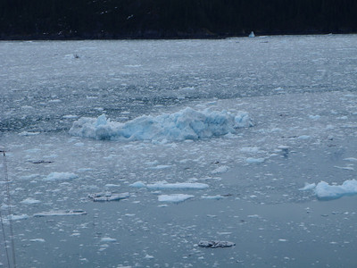College Fjord scenic view: more blue ice