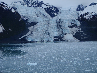 College Fjord scenic view: a different glacier