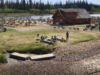 Activity: Riverboat Tour - Snow dog training camp along river (Iditarod champ Susan Butcher's husband instructing)