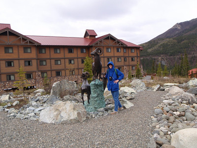 Accommodations: Denali Lodge - Jenny with metal sheep