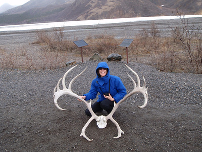 Activity: TWT Jenny with caribou antlers
