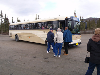 Activity: Tundra Wilderness Tour (TWT)...9 hours on this school bus viewing majestic scenery and wildlife